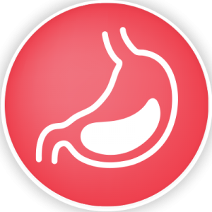 Kfibre_Digestion_Icon